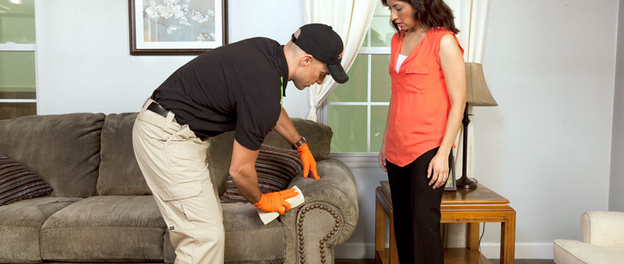 Abilene, TX carpet upholstery cleaning